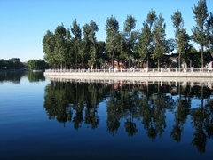 Trees lining the edge of the lake and reflected on the surface of the water at Shicha Hai in Beijing, China