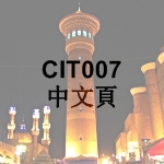 CIT007 Chinese Page Icon - 中文頁 - 150 x 150