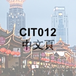 CIT012 Chinese Page Icon - 150 x 150