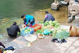 Locals wash vegetables on the bank of the Tuo River in Fenghuang (凤凰), Hunan Province, China