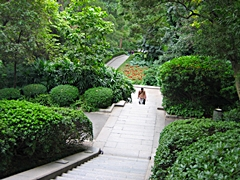 A lushly landscaped path and stairway in Yuexiu Park in Guangzhou, China