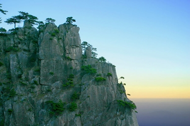 Small trees grow on a sheer mountainside under a clear, pale blue morning sky in Huangshan (黄山, Yellow Mountain), China