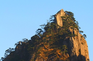 Small trees grow on a mountain peak under a clear, pale blue morning sky in Huangshan (黄山, Yellow Mountain), China