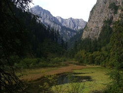 Grass Lake, overgrown with thick grass and nestled among mountains, in Jiuzhaigou (九寨沟), Sichuan Province, China