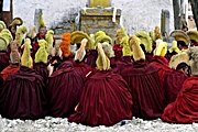 Lhasa - Sera Monastery - Yellow Hat monks - Steve Taylor - 180 x 120