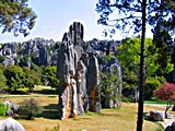 Shilin (Stone Forest) - Gilad Rom - 160 x 120