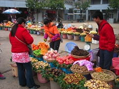Vendors selling fruit outside Yunnan's Stone Forest