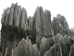 Jagged peaks of karst in Yunnan's Stone Forest