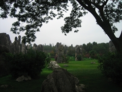 Carefully tended trees and grass complement the karst formations of the Stone Forest
