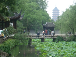 Lotus pads and a pagoda at the Humble Administrator's Garden in Suzhou (苏州), China