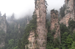 Misty karst (limestone) peaks and cliffs covered with vegetation in the Tianzi Mountain area of Zhangjiajie (张家界), Hunan Province, China