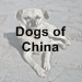 dogs of china icon with text - 75 x 75